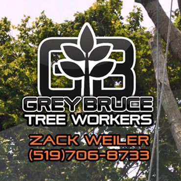 Zack-Grey Bruce Tree Workers PROFILE.logo