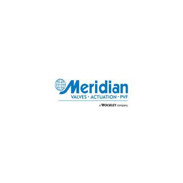 Meridian • Valves • Actuation • PVF logo