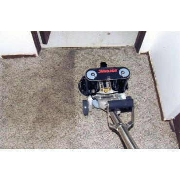 Carpet cleaning LaSalle
