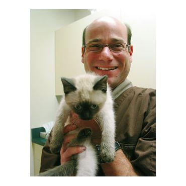 Dr. Jamie Levine holding kitty