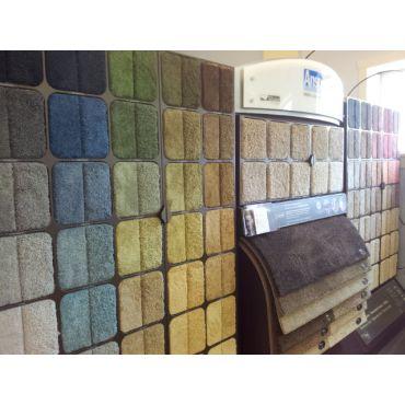 Shaw Colour Wall