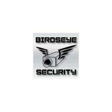 Birdseye Security PROFILE.logo