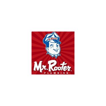 Mr Rooter Plumbing Heating & Drainage logo