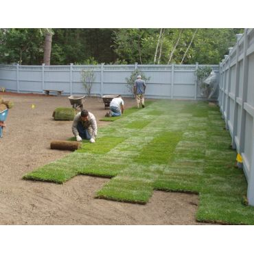 Best Service and Sod Guarantee