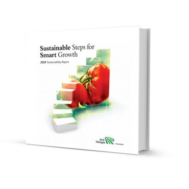 Annual and Sustainability Report Design