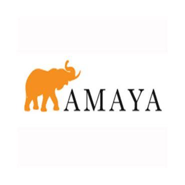 Amaya Express Leslieville logo