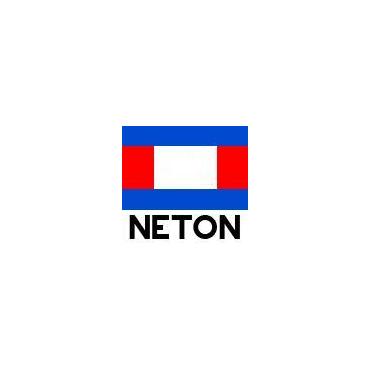 Neton Enterprises PROFILE.logo