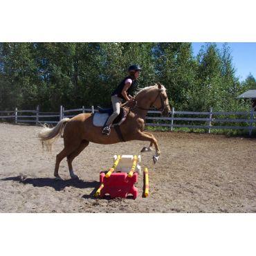 Riding Lessons- Geraldton