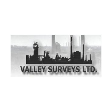 Valley Surveys PROFILE.logo