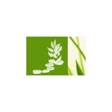 Natascha Steckel - Life Balance Coach, Nutritionist, GenesisPURE® Independant Distributor PROFILE.logo