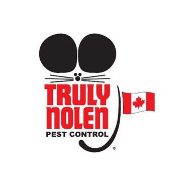 Pest control port elgin
