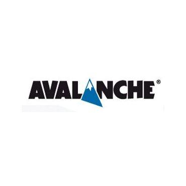 Avalanche Inc logo