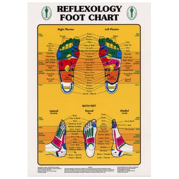 """Our published """"Reflexology Foot Chart"""""""