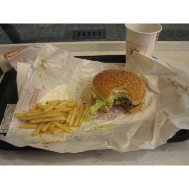 Burger King PROFILE.logo