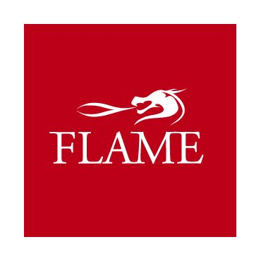 Flame Design logo