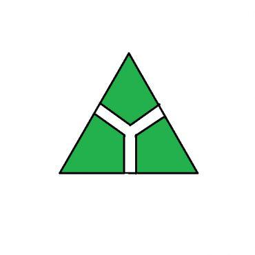 Star Delta Electric Ltd. logo