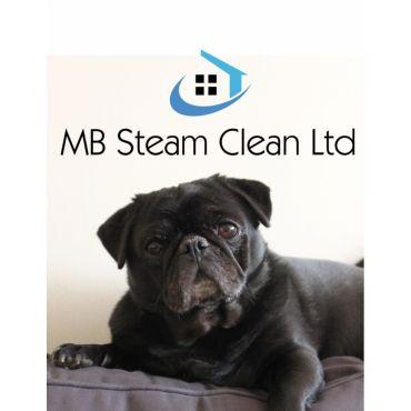 MB Steam Clean Ltd logo