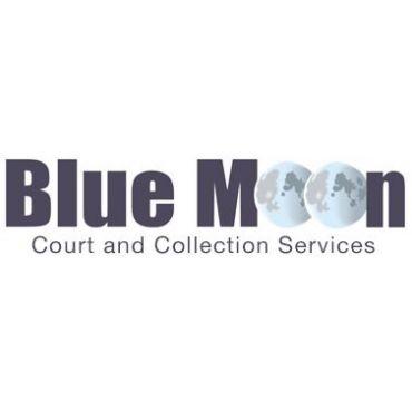 BLUE MOON Collection Services PROFILE.logo