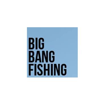 Bigbangfallout Com Inc logo