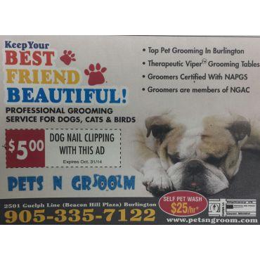 Pets n groom in burlington on 9053357122 411 3 more solutioingenieria Gallery