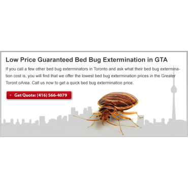 Bed Bug Exterminator Pro In Toronto On 4165664079 411 Ca