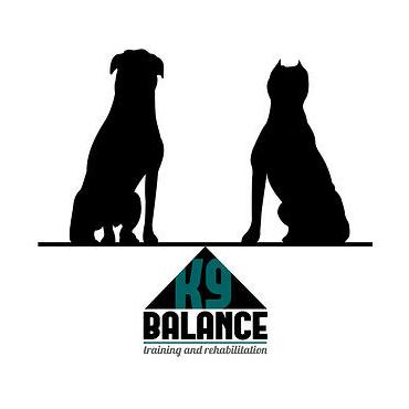 K9 Balance Training & Rehab logo