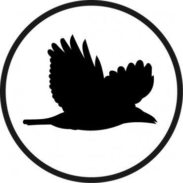 Raven Media PROFILE.logo