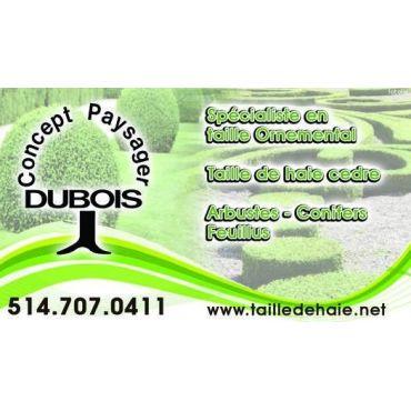 Concept Paysager Dubois logo