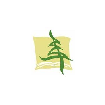 Pine Ridge Dental Centre PROFILE.logo