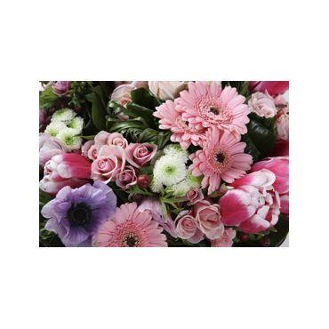 Aux Pousses Fleuries logo