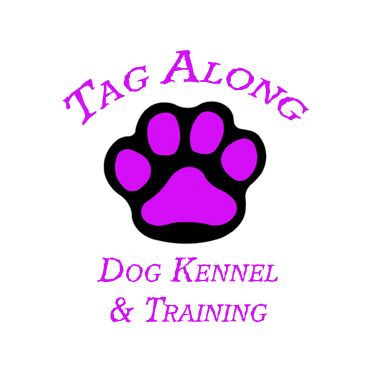 Fern Dog Training Reviews