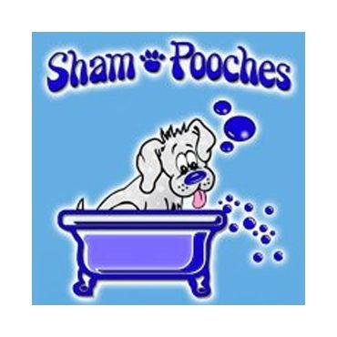 Sham pooches grooming spa self served dog wash in edmonton ab sham pooches grooming spa self served dog wash solutioingenieria Gallery