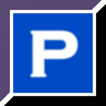 Picture Perfect Portraits logo