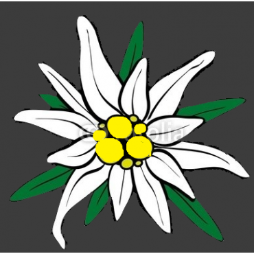 Edelweiss Environmental Inc. PROFILE.logo