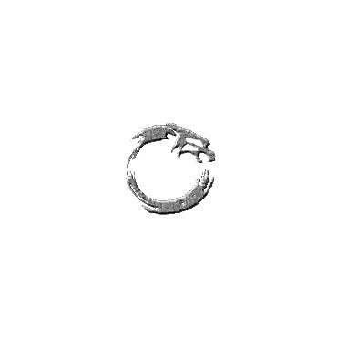 Inertial Zen Designs logo