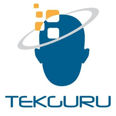TEKGURU PROFILE.logo
