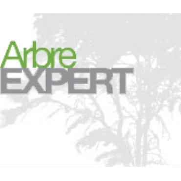 Arbre Expert Abattage Emondage Econo PROFILE.logo