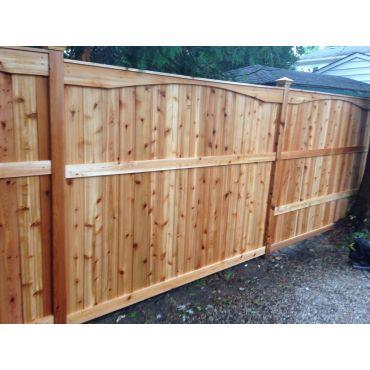 Cedar fence with Scallop