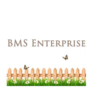 BMS Enterprise PROFILE.logo