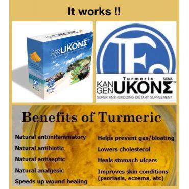 Kangen UkonƩ Turmeric Supplement