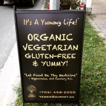 Vidya's Veggie Gourmet Restaurant PROFILE.logo