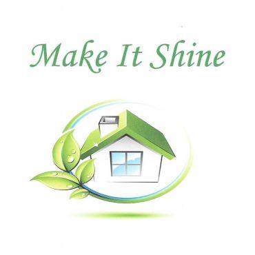 Make It Shine PROFILE.logo