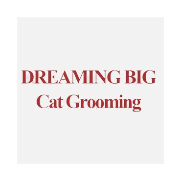 Dreaming Big PROFILE.logo