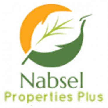 Nabsel Properties Plus logo