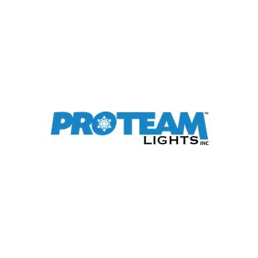 Pro Team Lights PROFILE.logo