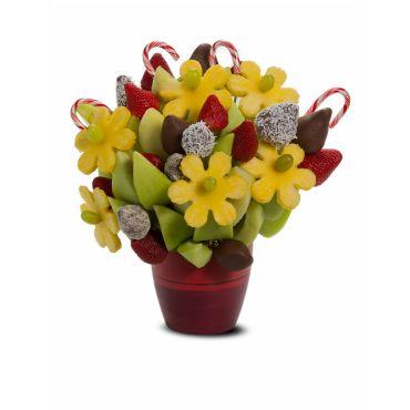 Candy Cane Blossom