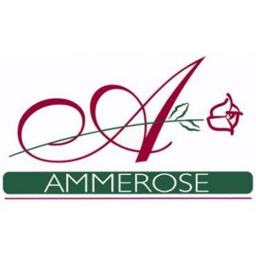 Ammerose Hair Salon PROFILE.logo