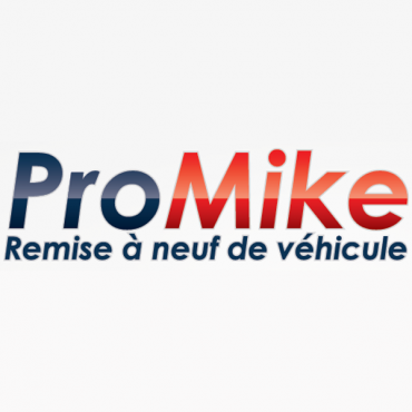 Lavages Pro-Mike logo