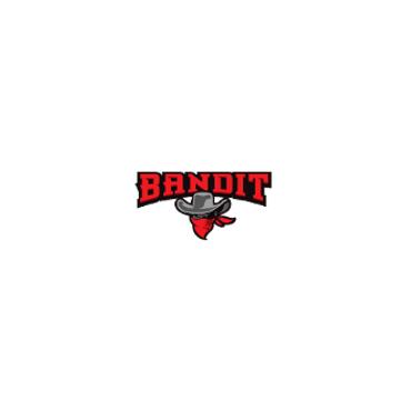 Bandit Motorsports logo