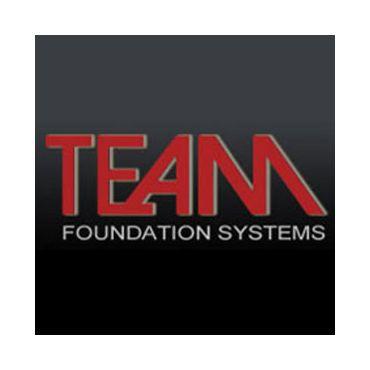 Team Foundation Systems Ltd logo